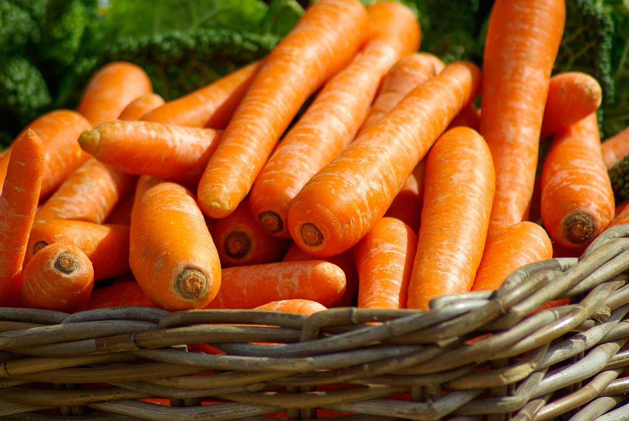 Healthy Foods - Carrot