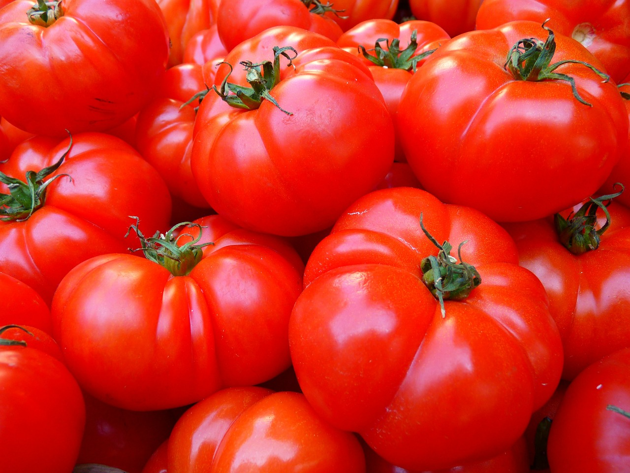 Healthy Food Tomatoes