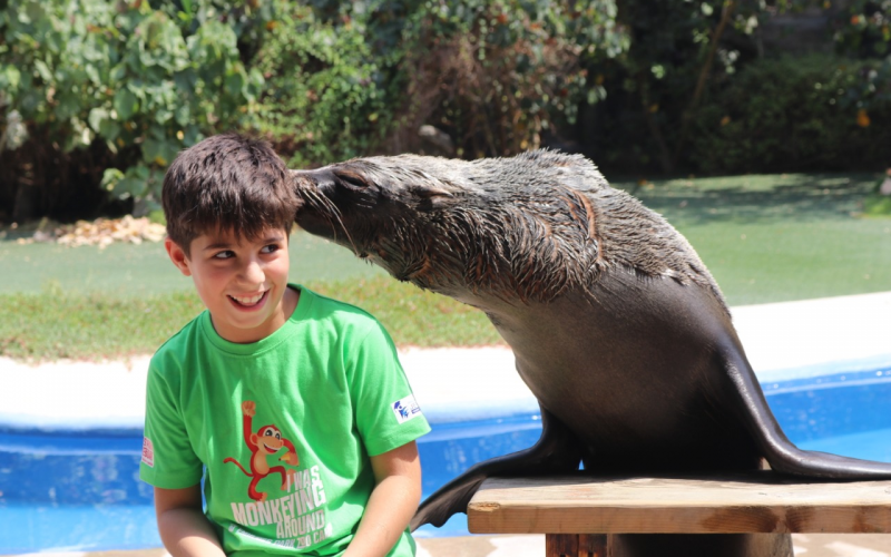 Special Summer Zoo Camp Offer Exclusive To Education Finders